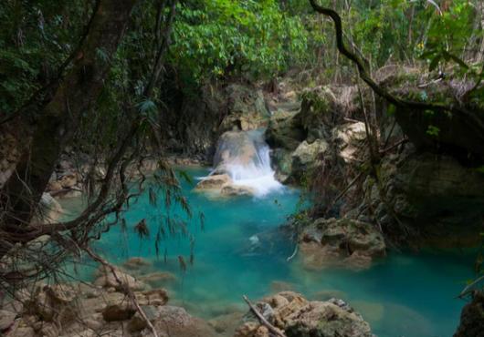 kawasan waterfalls2